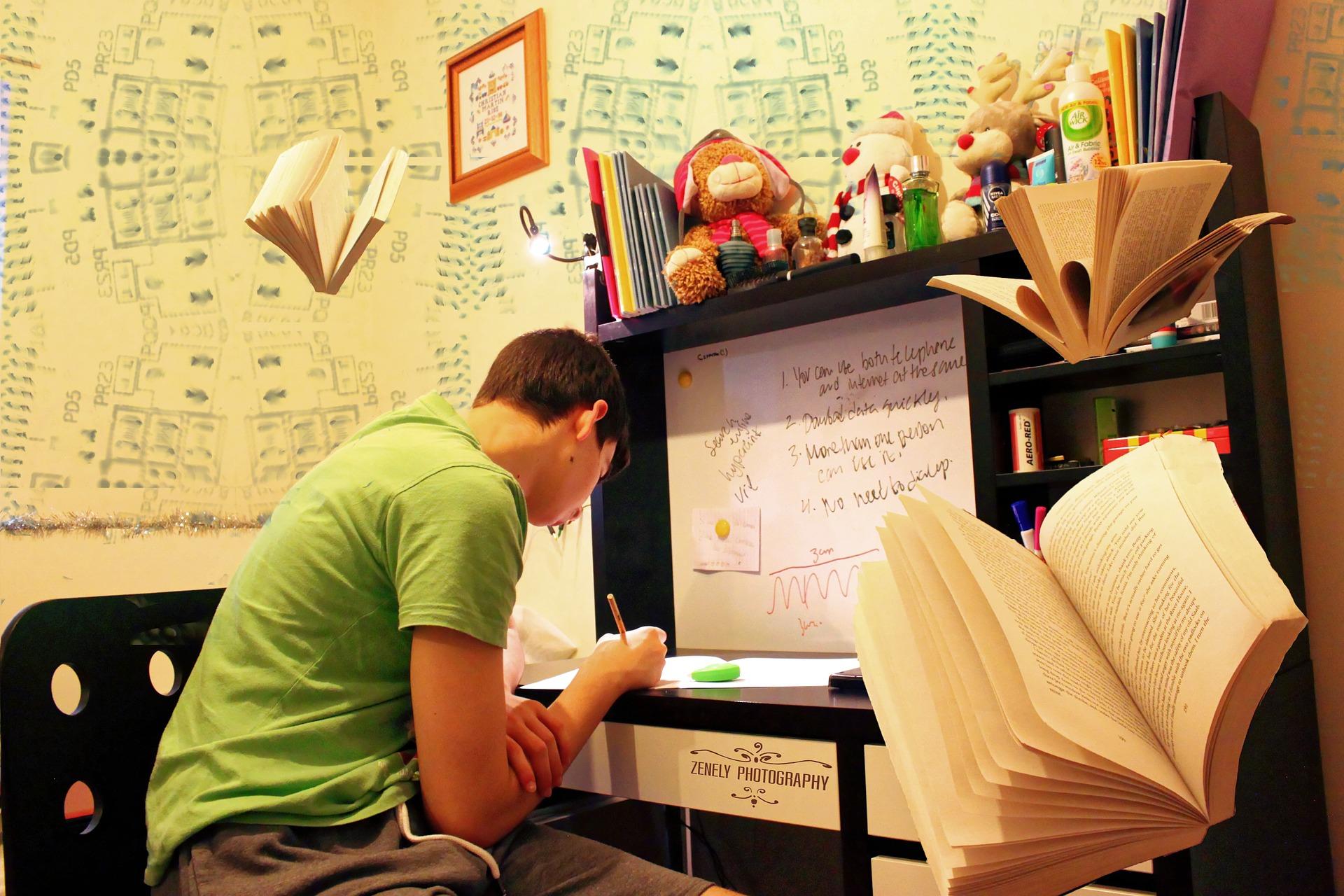 Saiba o que é preciso para dar aulas online